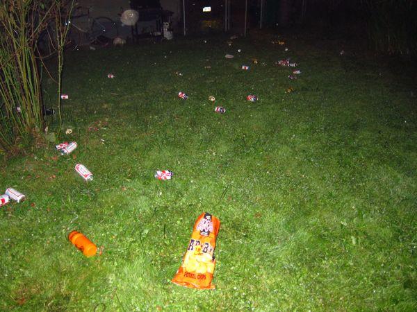 ruined backyard