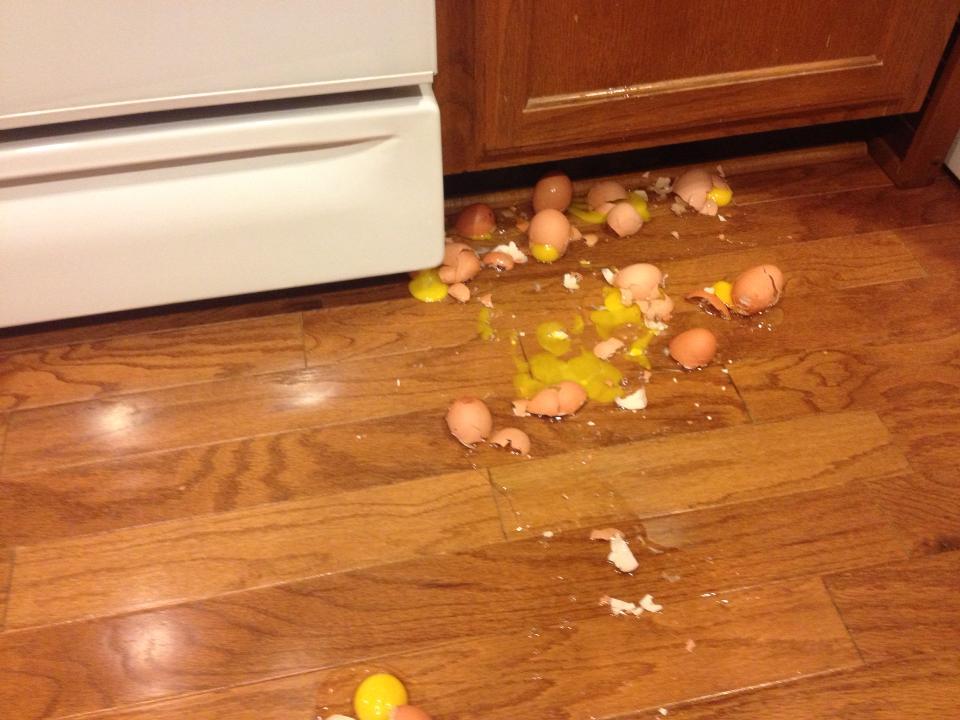eggsonthefloor