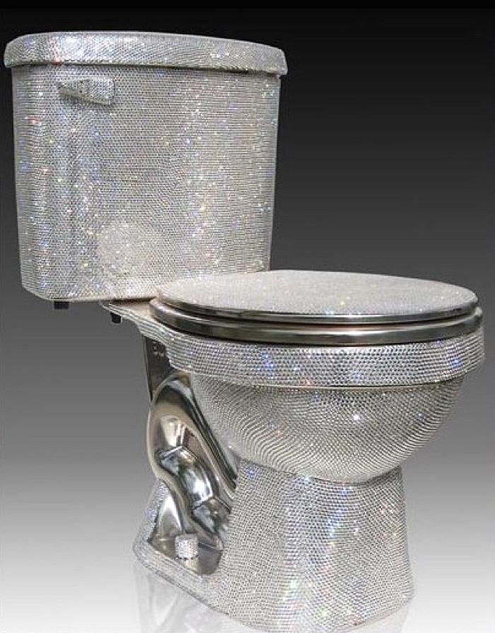 expensive-toilet1